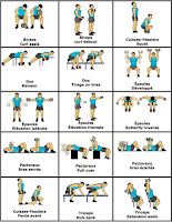 Gym workout chart