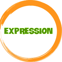 Learn Microsoft Expression Web