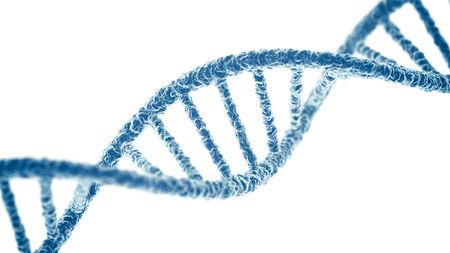 Perbedaan Antara DNA dan Gen