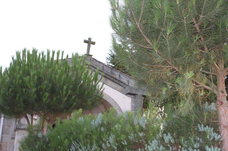 Culito en la huelga de dolores guatemala - 4 3