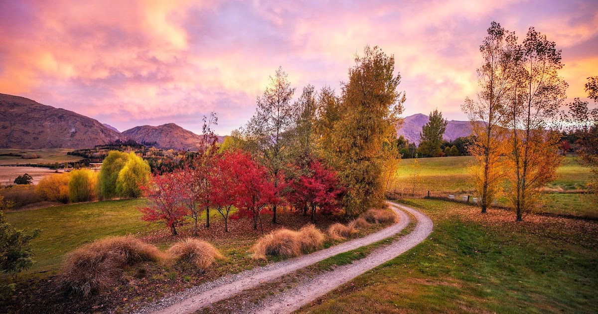 herbst landschaft in neuseeland  hd hintergrundbilder