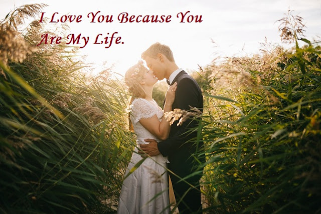 Romantic Valentine's Day Special Quotes Wishes 2017