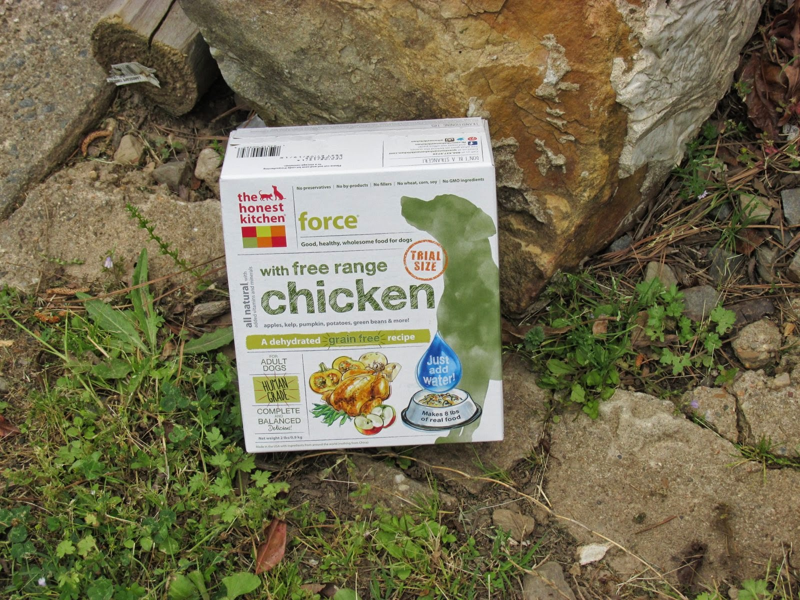 Makeup Mutts The Honest Kitchen Force Dog Food Review