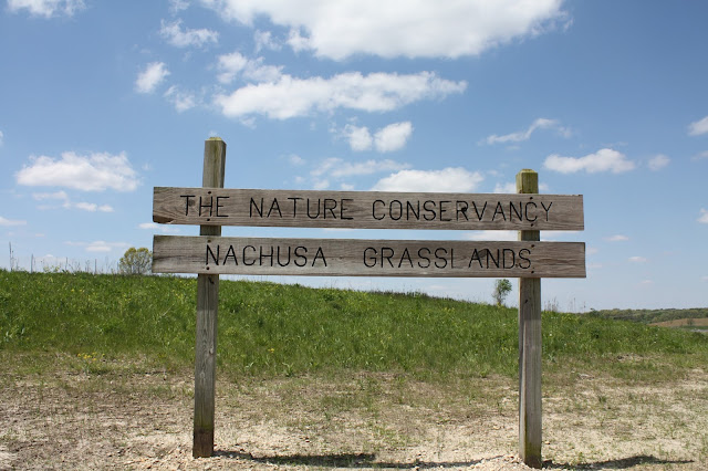 The Nature Conservancy's Nachusa Grasslands