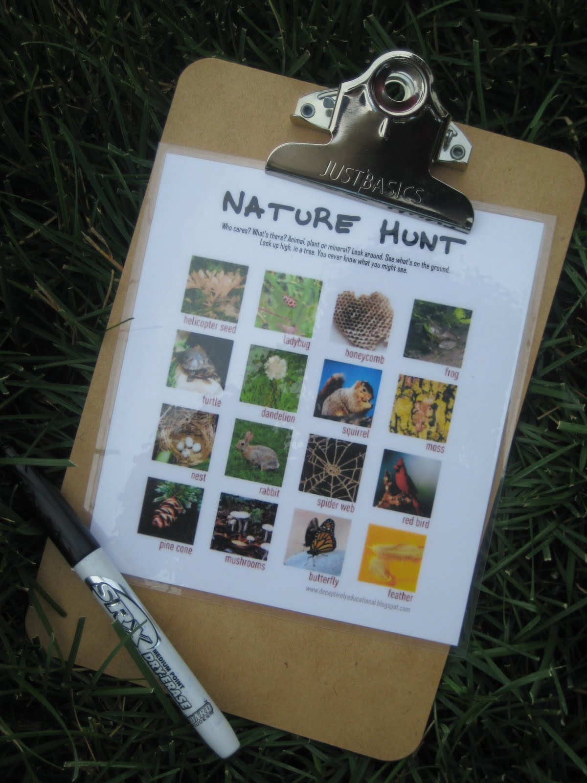 Relentlessly Fun Deceptively Educational Nature Scavenger Hunt