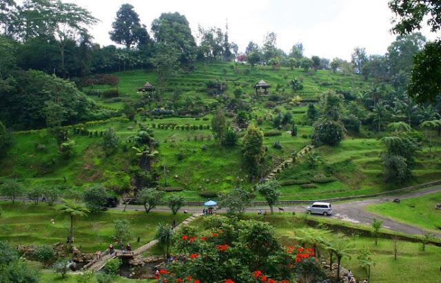Kebun Raya Cibodas, Alternatif Liburan Murah Meriah