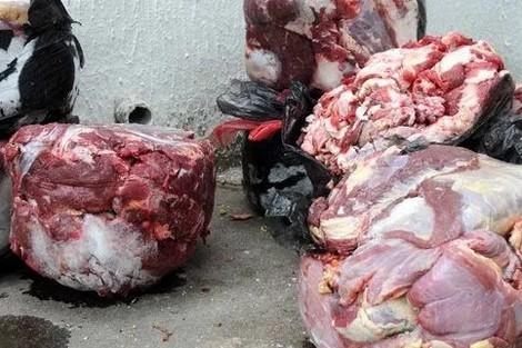 مطعم يقدم لحم الكلاب لسكان فاس .. والخراطي يطالب بتطبيق الإعدام