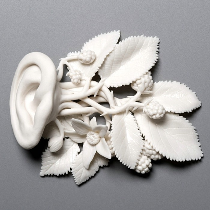 Simply Creative: Porcelain Sculptures Art by Kate MacDowell