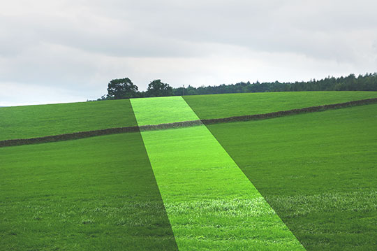 contemporary photography, art, photography, landscape, countryside, English countryside, travel, modern, Sam Freek,