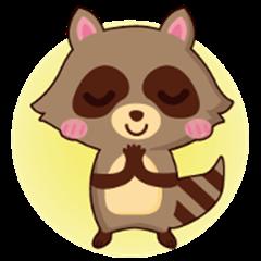 Raccoon life little diary