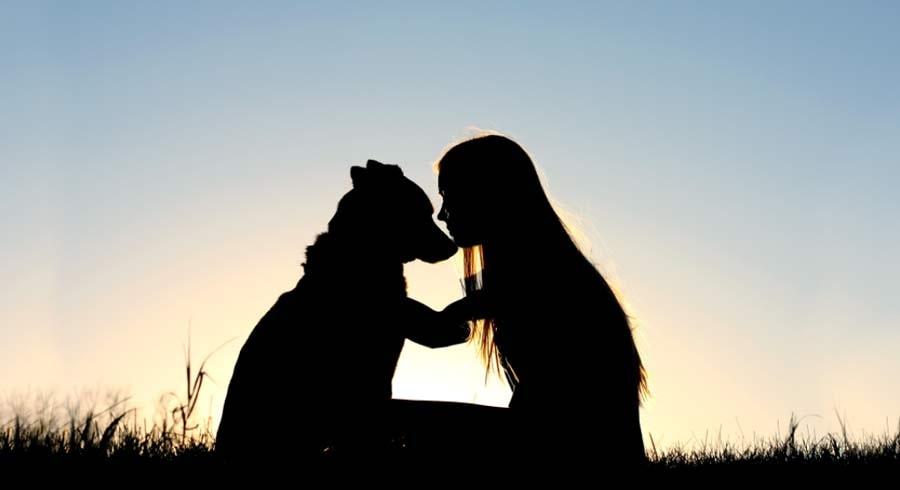 Frases De Amor Incondicional 3 A: Cómo Desarrollar El Amor Incondicional Y Aprender A Amar