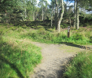 Start of Muir of Dinnet Walk