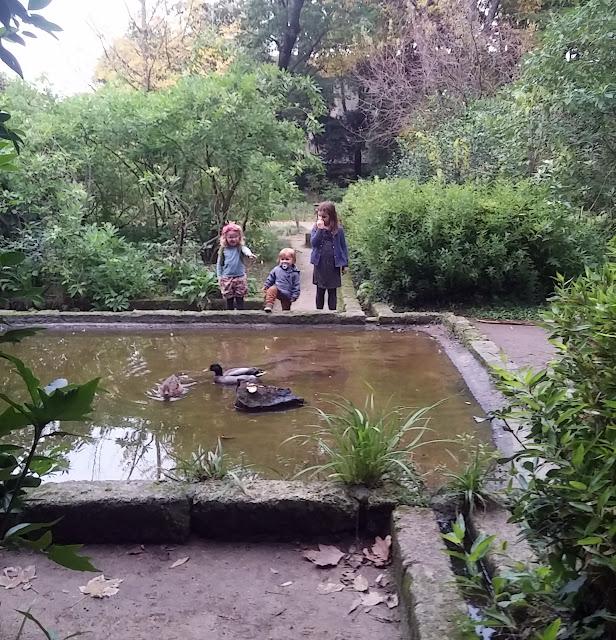 Le jardin des Plantes de Montpellier