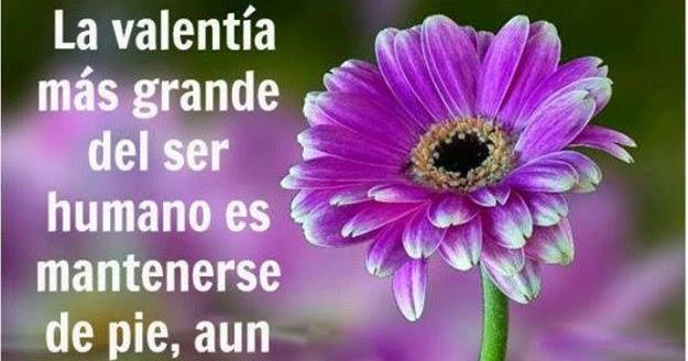 Imagenes Amor Facebook Fotos Imágenes Y Frases La