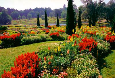 Pin Oo Lwin botanical garden