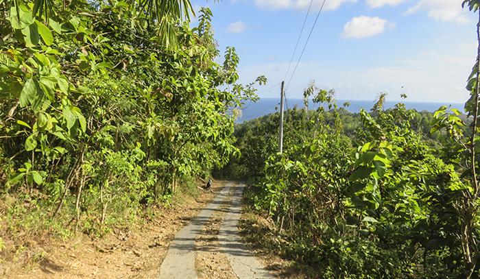 Kondisi Jalan Menjelang Sampai Pantai Timang