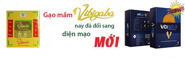 hinh-anh-gao-mam-vibigaba-info-nay-doi-sang-giao-dien-2016-moi