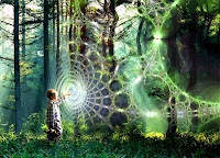 Infinite Quantum Zen - Holographic Fractal Matrix Structure - Interconnected Nested Multiverses within the Innerverse - Apollonian Gasket Fractals in multitudes of dimensions