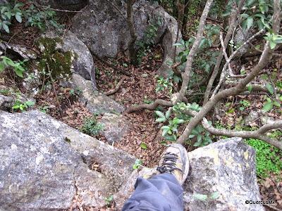 ¡Ahí va el sendero aunque no lo crean! Cerro de la Silla