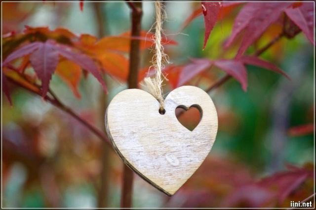 ảnh trái tim và lá mùa thu tháng 10