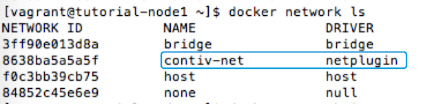 how Docker lists and uses a Contiv network