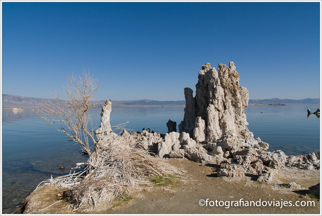 mono lake o lago mono en california un paisaje de otro planeta fotografiando viajes. Black Bedroom Furniture Sets. Home Design Ideas