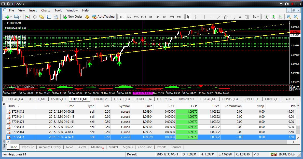 Rugi forex trading