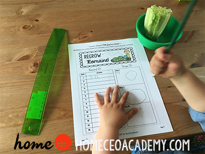 https://www.teacherspayteachers.com/Product/Grocer-Community-Helper-Week-28-Age-4-Preschool-Homeschool-Curriculum-2956007