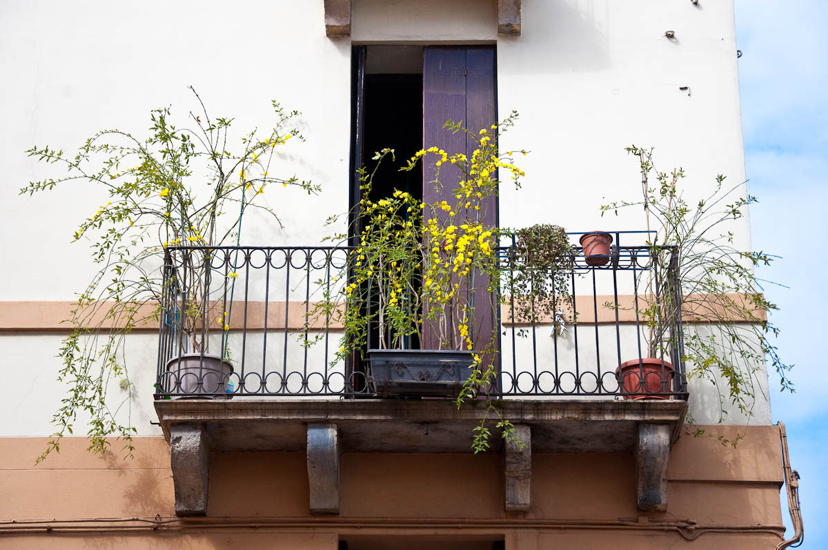 A balcony in bloom, Vicenza, Veneto, Italy