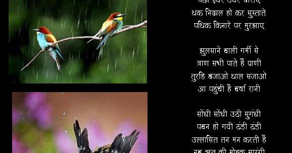 Hd Wallpaper Monsoon Birds In Rain Poems For Kids In Hindi Monsoon Poems In