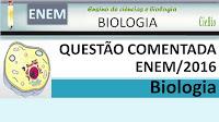 Questão comentada de Biologia do ENEM