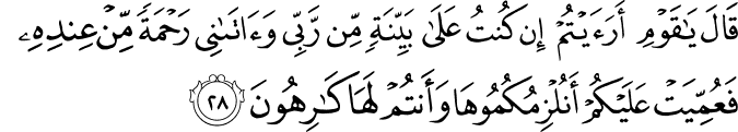 Surat Hud Ayat 28