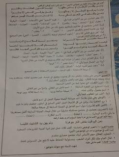 ورقة امتحان اللغة العربية الصف الثالث الاعدادى محافظة الدقهلية الترم الثانى 2017