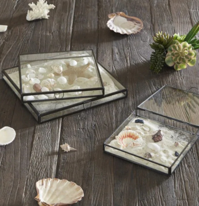 Keepsake Glass Box Idea for Seashells