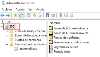 Administrador DNS propiedades
