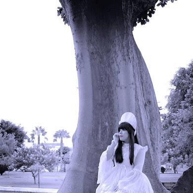 Experiencia Lolita: Moon Bastet - Perú