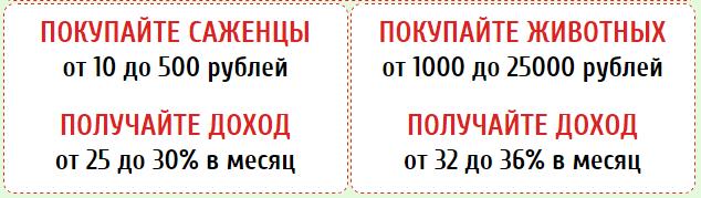 luchshayaferma.ru ммгп