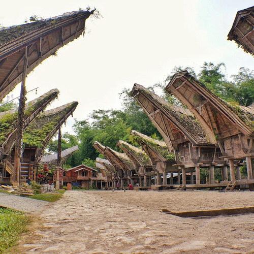 Tinuku Travel Kete Kesu Toraja, traditional village in row Tongkonan houses 300 years old, 500 years tombs and menhirs