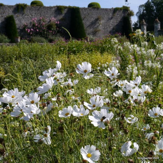 https://riedgarten.blogspot.de/2017/01/les-jardins-du-chateau-de-valmer.html