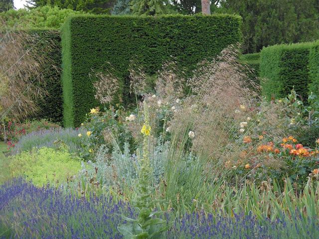 żywopłot z cisa, angielska rabata, ogród angielski