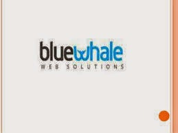 Bluewhale Solutions-main-logo
