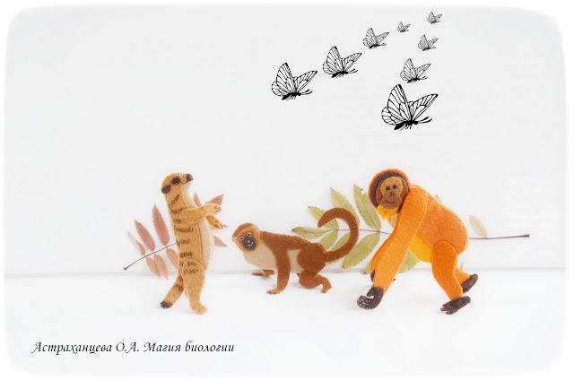 пальчиковый-театр-мартышка-сурикат-орангутан-бабочки