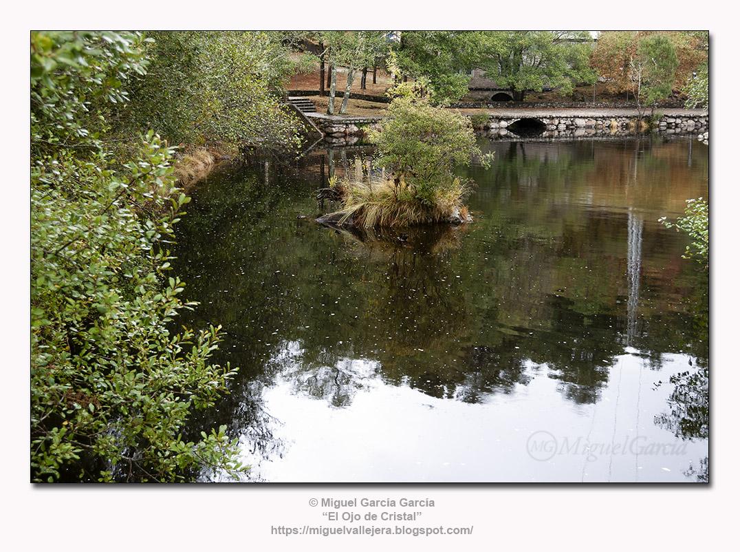 Río Tea, desembocadura del río Fofe, en Maceira (Pontevedra)