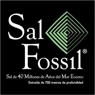 http://www.fossilriver.es/