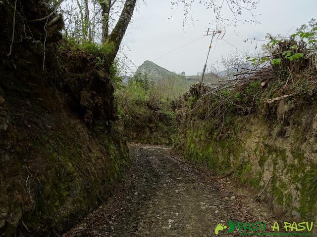 Camino por encima de Lligüeria