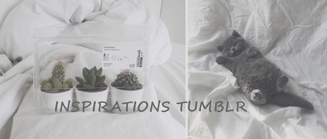 INSPIRATIONS TUMBLR #3