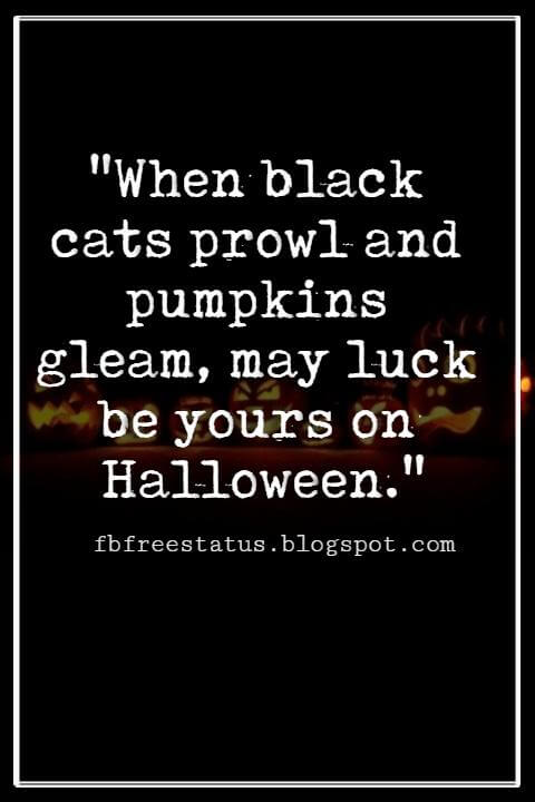 "Halloween Quotes And Sayings,  ""When black cats prowl and pumpkins gleam, may luck be yours on Halloween."""