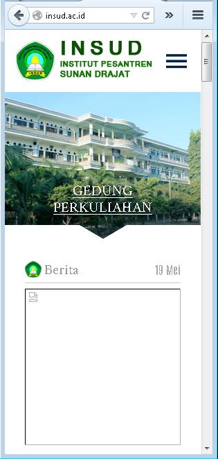 website resmi insud sunan drajat