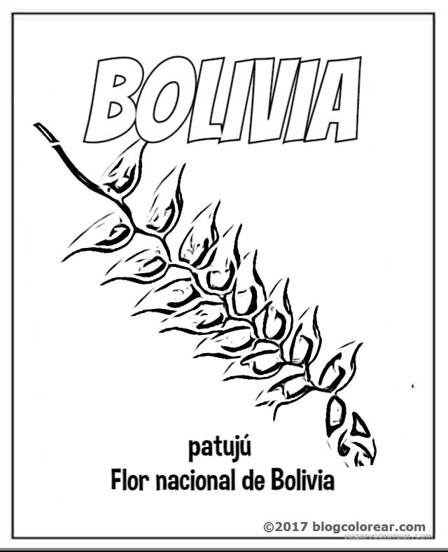Bolivia Escudo Bandera Y Flor Nacional Kantuta Para Colorear