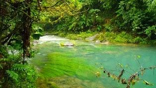 natura con fiume foto